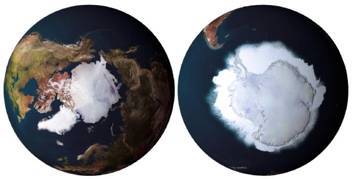 Artico Antartico