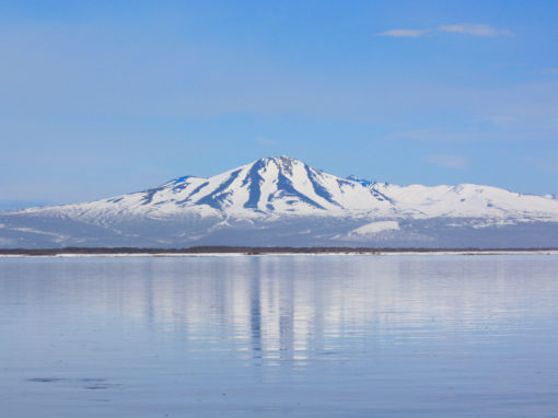 EXPEDITION TO KAMCHATKA, ALEUTIAN ISLANDS AND ALASKA