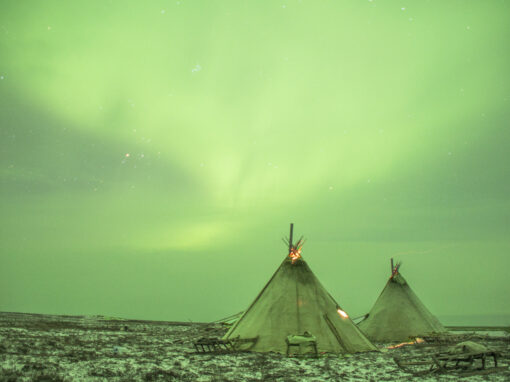 NOVEMBER 2021: YAMAL, THE NENETS MIGRATION AND AURORA BOREALIS<span>2 SPACES AVAILABLE</span>